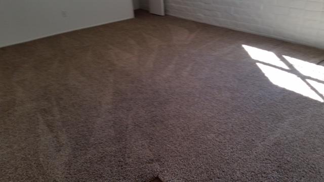 Fresh and clean carpet